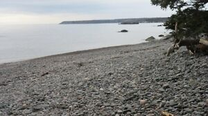 MEADOW COVE RD. (Lot G), DIPPER HARBOUR