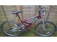 Raleigh mountain bike bicycle