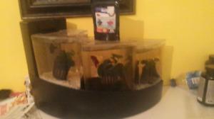 Aquarium 3 bocal pour bêta