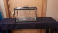5 Gallon glass tank with lid