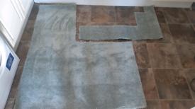 Free Carpet offcuts