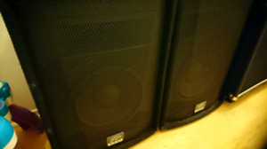 Pair of 2 Peavey extension cabs for PA.