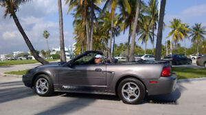 2003 Ford Mustang Deluxe Convertible 2 door  Bristol NEW PRICE