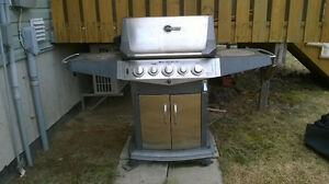 Blue Ember Grills Outdoor Gas BBQ/Grill