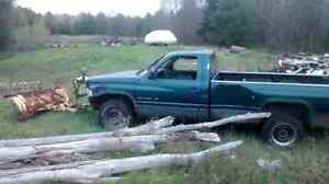 Fire wood logs and some cut seasoned and fresh cut standing dead Belleville Belleville Area image 2