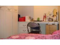 Single Room for a clean Professional £110 pw All Inc.