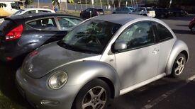 ve beetle