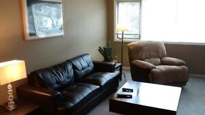 Downtown Fully Furnished and Equipped 3 Bedroom Suite
