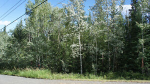 One Acre Building Lot in Established Subdivision