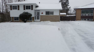 Beautiful Side Split, 3 BR's Detached Home Completely Renovated