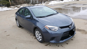 Grey 2014 Toyota Corolla for sale