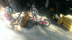 Bikes and trikes for sale