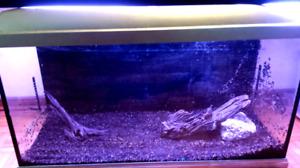 25 Gallon Complete Aquarium