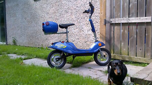 Maxx Hog Scooter Great Condition.
