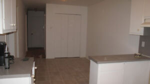 bright renovated 4 1/2 for rent, available now