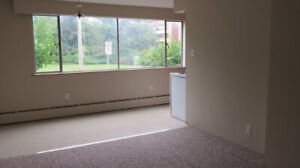$1,190 STUDIO UNIT INCLUDES HEAT AND HOT WATER