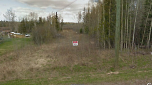 10.45 acre lot on Giscome Rd- Bare land