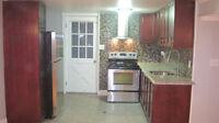 3 Bedroom Basement Apartment in Detached House for Rent Dec.1
