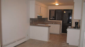 bright renovated 4 1/2 for rent, available now!