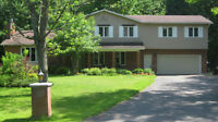 Check Out This Beauty on a 2.4 Acre Treed Lot in Navan