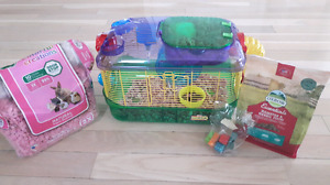 Very sweet female  hamster looking for  a good home
