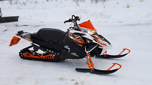 2015 XF 8000 CROSS COUNTRY SNO PRO