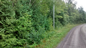 Small Acreage near Apsley and Chandos Lake - VTB or Rent to Own