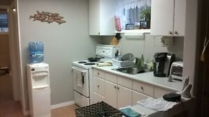 Lrg One Bedroom Basement Apart. avail. Feb 15 - Everything Incl. Cambridge Kitchener Area image 2