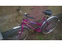 Pink Apollo mountain bike