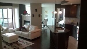 spacious and luxurious 2-bedroom and 2-full-bathroom condo