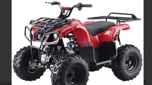 Looking for Chinese atv parts will also buy whole bikes