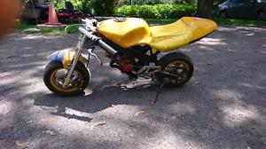 Pocket bike 55cc stage 5