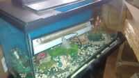 Fish Tank With Many Accessories Watch|Share |Print|Report Ad