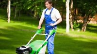 Lawn mowing services $35