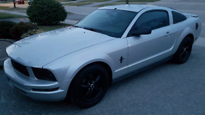 08 Mustang mint condition low km  lots of upgrades