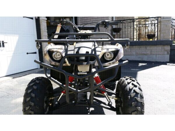Tao Tao 150cc atv manual
