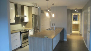 4 1/2 2-bedroom condo (2014) in Vaudreuil-Dorion, ready to move