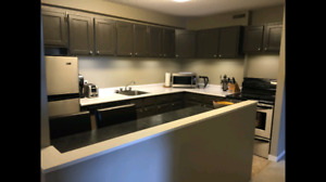2 Bedroom Condo for rent in Charleswood