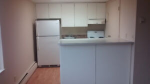 Summer sublet - Bachelor apartment - own kitchen and washroom
