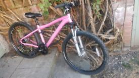 """Marin bear Valley pink ladies mountain bike 15"""" frame carrera"""