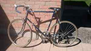 25 inch Raleigh Concord 1979 English