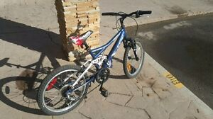 Vandal mountain bike in great condition