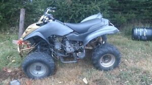 gio 250cc needs new wireharness but worked before it broke