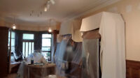 Plaster/Paint/Stucco Removal & Refinish...691-8801