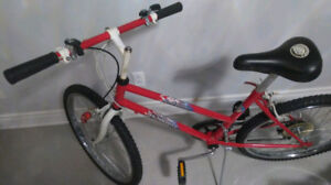 """Bicycle For Girls 24inch Wheels/ Vélo / Wheel 24""""/ In Good CONDI"""