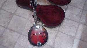 Electric tradition mandolin with case