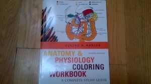Anatomy & Physiology coloring workbook Windsor Region Ontario image 1