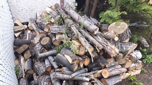 Firewood - maple and birch