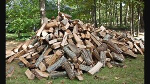 Hard wood for sale 260$ a cord  split and dry. Delivered