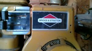 Briggs and Stratton water pump